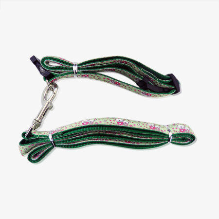 pet collar and leashes-1