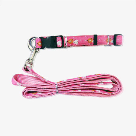 pet collar and leashes