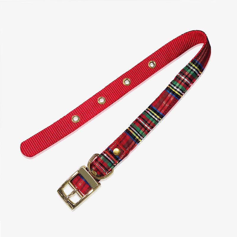 custom pet collar-1