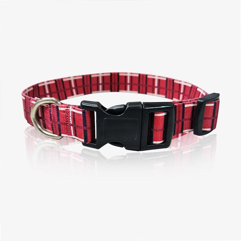 custom pet collar-2