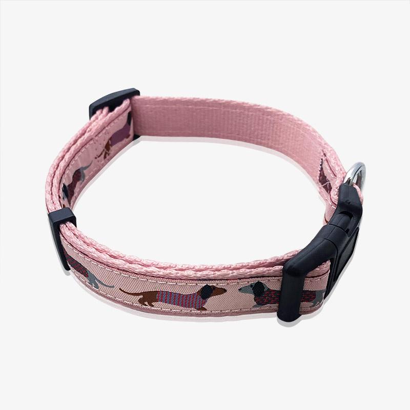 customized pet collar-1